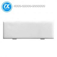 [무어] 4000-68000-9000000 / 판넬 전면 인터페이스 - 액세서리/먼지-보호셋트 / MODLINK MSDD LABEL PLATES / 20 x 7 mm (1 frame with 20 pcs.)