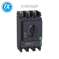 [슈나이더] GV6P320F / 모터보호용 차단기 / 모터 회로 차단기 / TeSys GV6 / 3P, 320A, Icu 36kA - 열동자기형 차단기