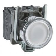 [슈나이더]XB4BW31M5 /조광누름버트 스위치/메탈 베젤 AC220V 백색 1A1B접점